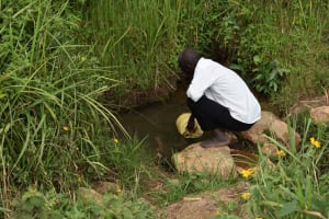 The Water Project: Chombeli Community, Ernest Kuta Spring -  Ernest Kuta Collecting Water