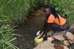 The Water Project: Chombeli Community, Ernest Kuta Spring -  Josephine Collecting Water