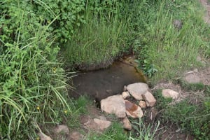 The Water Project: Chombeli Community, Ernest Kuta Spring -  Water Source