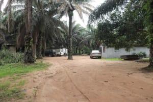 The Water Project: Rosint, Cassava Farm, Makuta Oil Palm Garden -  Landscape