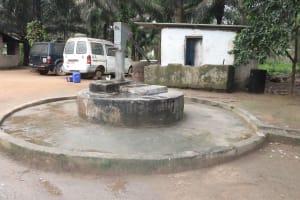 The Water Project: Rosint, Cassava Farm, Makuta Oil Palm Garden -  Main Well