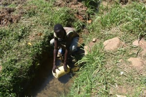 The Water Project: Muting'ong'o Community, Chivuyi Spring -  Emmanuel At Spring