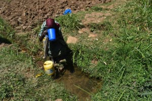 The Water Project: Muting'ong'o Community, Chivuyi Spring -  Jentrix At Spring