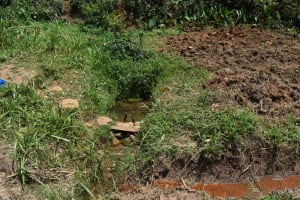 The Water Project: Muting'ong'o Community, Chivuyi Spring -  Spring
