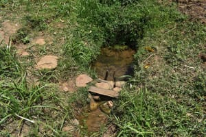The Water Project: Muting'ong'o Community, Chivuyi Spring -  Unprotected Water