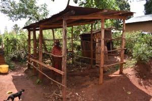 The Water Project: Shivakala Community, Mukangu Spring -  Animal Shed