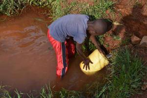 The Water Project: Shivakala Community, Mukangu Spring -  Fetching Water