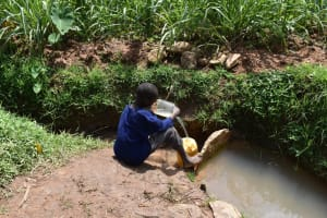 The Water Project: Mang'uliro Community, Christopher Wambula Spring -  Collecting Water