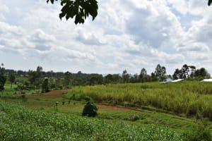 The Water Project: Mang'uliro Community, Christopher Wambula Spring -  Community Landscape