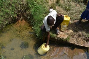 The Water Project: Mang'uliro Community, Christopher Wambula Spring -  Fetching Water