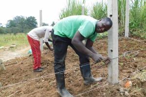 The Water Project: Nangurunya Community, Robert Musali Spring -  Fencing