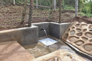The Water Project: Nangurunya Community, Robert Musali Spring -  Complete Spring