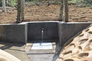 The Water Project: Nangurunya Community, Robert Musali Spring -  The Water Point