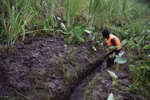 The Water Project: Bukhakunga Community, Wakukha Spring -  Drainage Channel