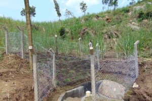 The Water Project: Bukhakunga Community, Wakukha Spring -  Completed Spring