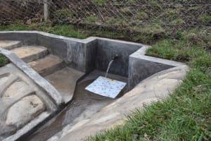 The Water Project: Bukhakunga Community, Wakukha Spring -  Ready For Use