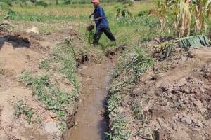 The Water Project: Shamoni Community, Shiundu Spring -  Drainage