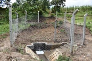 The Water Project: Shamoni Community, Shiundu Spring -  Ready For Use