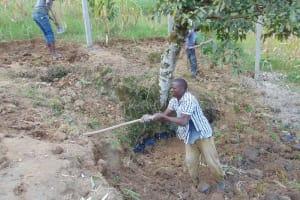 The Water Project: Shamoni Community, Laban Ang'ata Spring -  Soil Cover