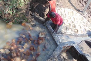 The Water Project: Lunyinya Community, Makunga Spring -  Backfilling With Clay