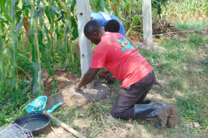 The Water Project: Lunyinya Community, Makunga Spring -  Fencing