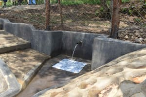 The Water Project: Lunyinya Community, Makunga Spring -  Clean Water Flowing