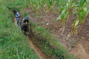 The Water Project: Makunga Community, Tabarachi Spring -  Drainage
