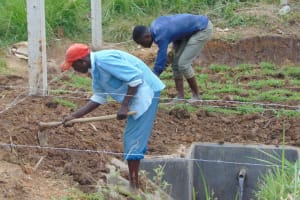 The Water Project: Makunga Community, Tabarachi Spring -  Grass Planting