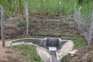 The Water Project: Malimali Community, Onyango Spring -  Ready For Fetching