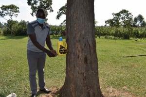 The Water Project: Malimali Community, Onyango Spring -  Leaky Tin Set Up