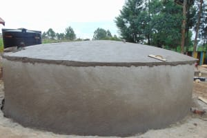 The Water Project: St. Elizabeth Shipala Primary School -  Dome Curing