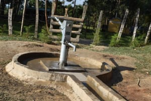 The Water Project: Shamberere Boys' High School -  Complete Borehole