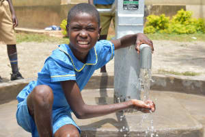 The Water Project: Bukhakunga Primary School -  Water Celebrations