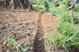 The Water Project: Khunyiri Community, Edward Spring -  Runoff Channel