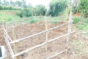The Water Project: Khunyiri Community, Edward Spring -  Fencing Complete