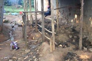 The Water Project: Murumba Community, Patrick Muyembere Spring -  Animal Shelter