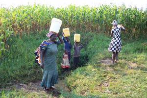 The Water Project: Murumba Community, Patrick Muyembere Spring -  Carrying Water