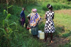 The Water Project: Murumba Community, Patrick Muyembere Spring -  Collecting Water
