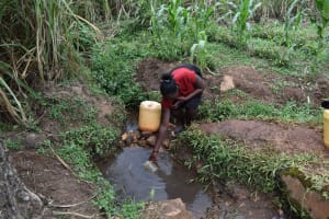 The Water Project: Chimoroni Community, Maurice Luta Spring -  Christine Fetching Water