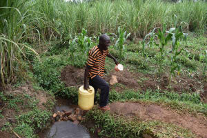 The Water Project: Chimoroni Community, Maurice Luta Spring -  Luta Carrying Water