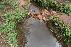 The Water Project: Chimoroni Community, Maurice Luta Spring -  Water Point