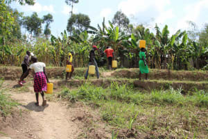 The Water Project: Shiana Community, Masiache Spring -  Carrying Water Home