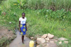 The Water Project: Shiana Community, Masiache Spring -  Centrine Drawing Water