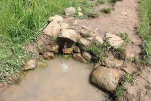 The Water Project: Shiana Community, Masiache Spring -  Unprotected Water