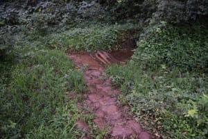 The Water Project: Mungakha Community, Mungakha Spring -  Unprotected Spring