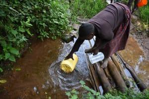 The Water Project: Mungakha Community, Mungakha Spring -  Judith Fetching Water