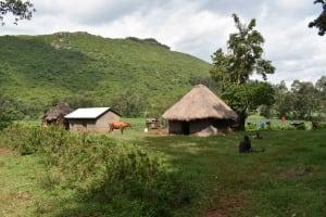 The Water Project: Mungakha Community, Mungakha Spring -  Homestead