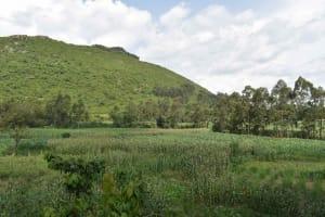 The Water Project: Mungakha Community, Mungakha Spring -  Landscape