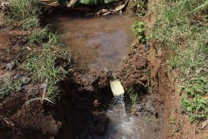 The Water Project: Makunga Community, Akinda Spring -  Water Source