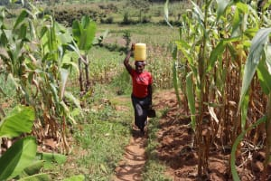 The Water Project: Makunga Community, Akinda Spring -  Joan Carrying Water